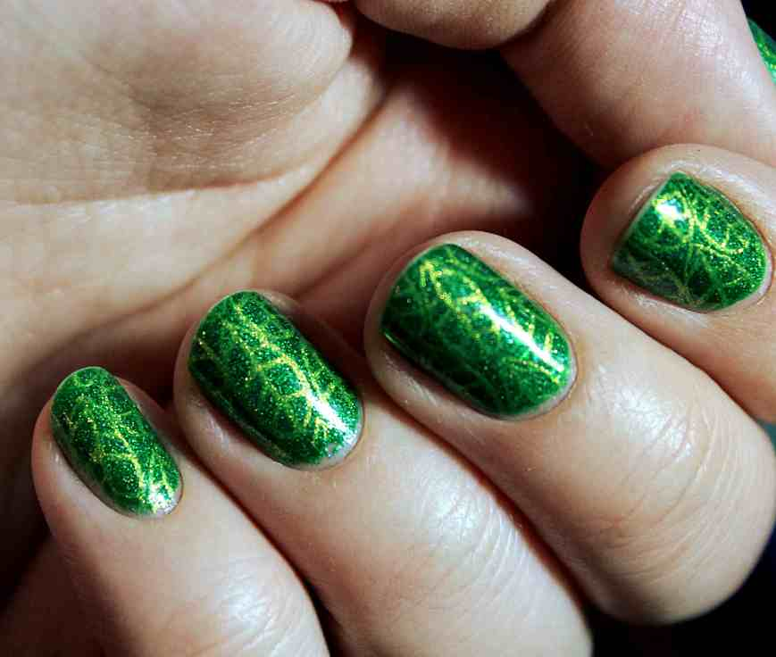 Didichoups - Picture Polish - Hercynia 08