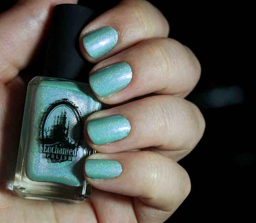 Didichoups - Enchanted Polish - March 2015 04