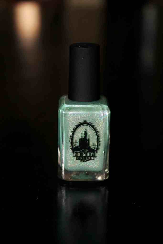 Didichoups - Enchanted Polish - March 2015 17